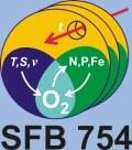 Logo des SFB754